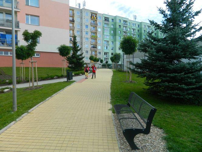 Realizace parku